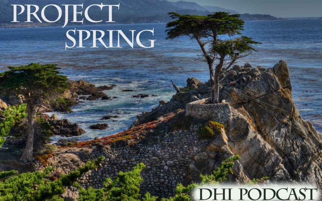 DHI 035 – Project Spring